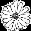 flower head 1.png