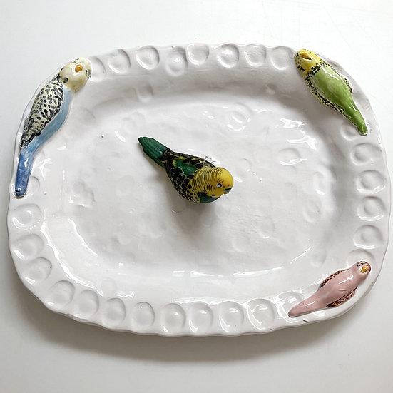 Budgie platter - med, large