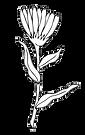 single flower stem cut out.png