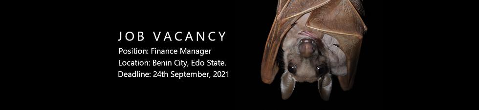 Job Vacancy web5.png