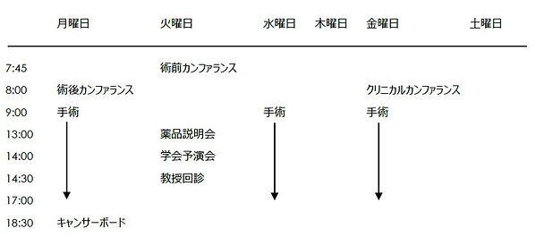 昭和大学藤が丘病院 消化器・一般外科 週間よt予定