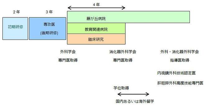 昭和大学藤が丘病院 消化器・一般外科 キャリアデザイン