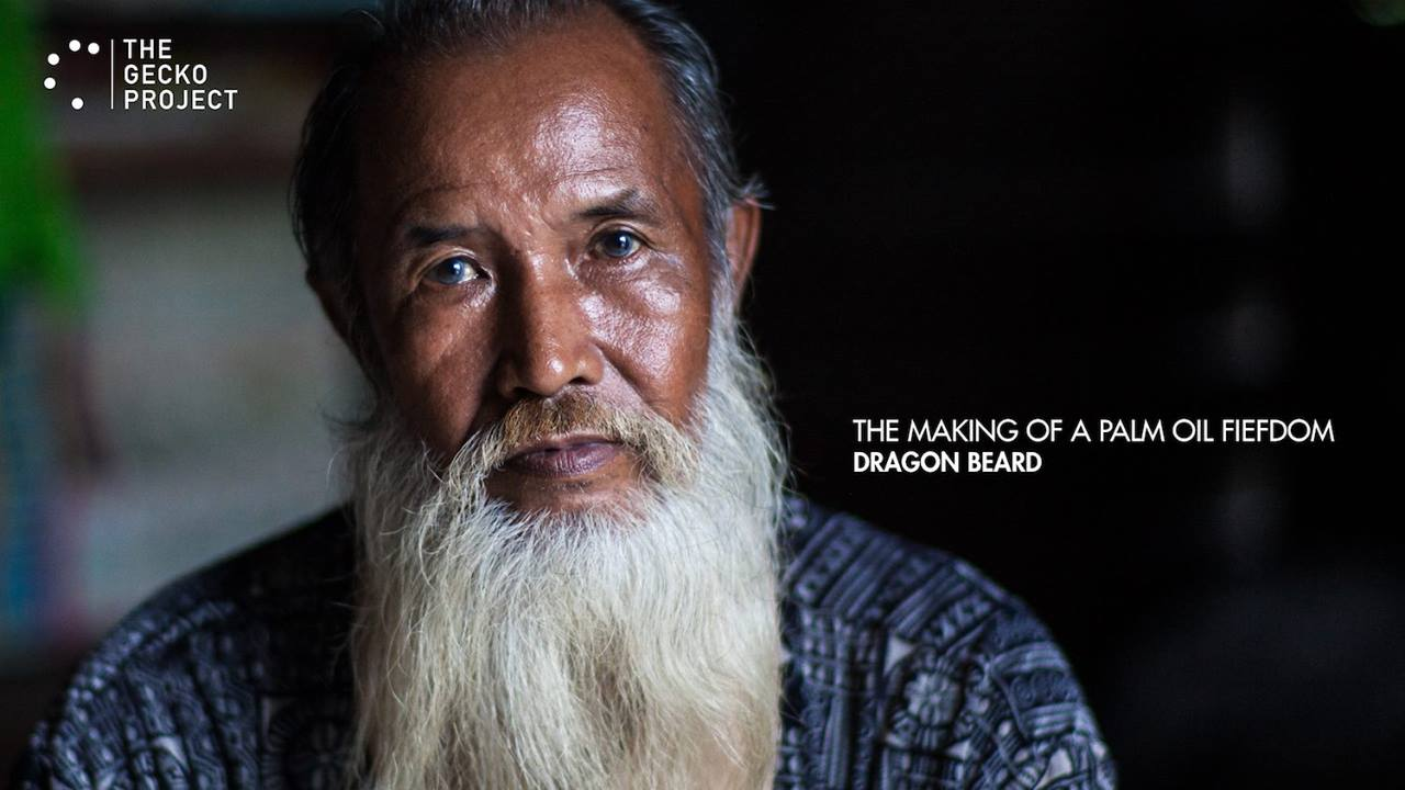 The making of a palm oil fiefdom: Dragon Beard