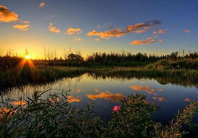Sunrise-Pond.jpg