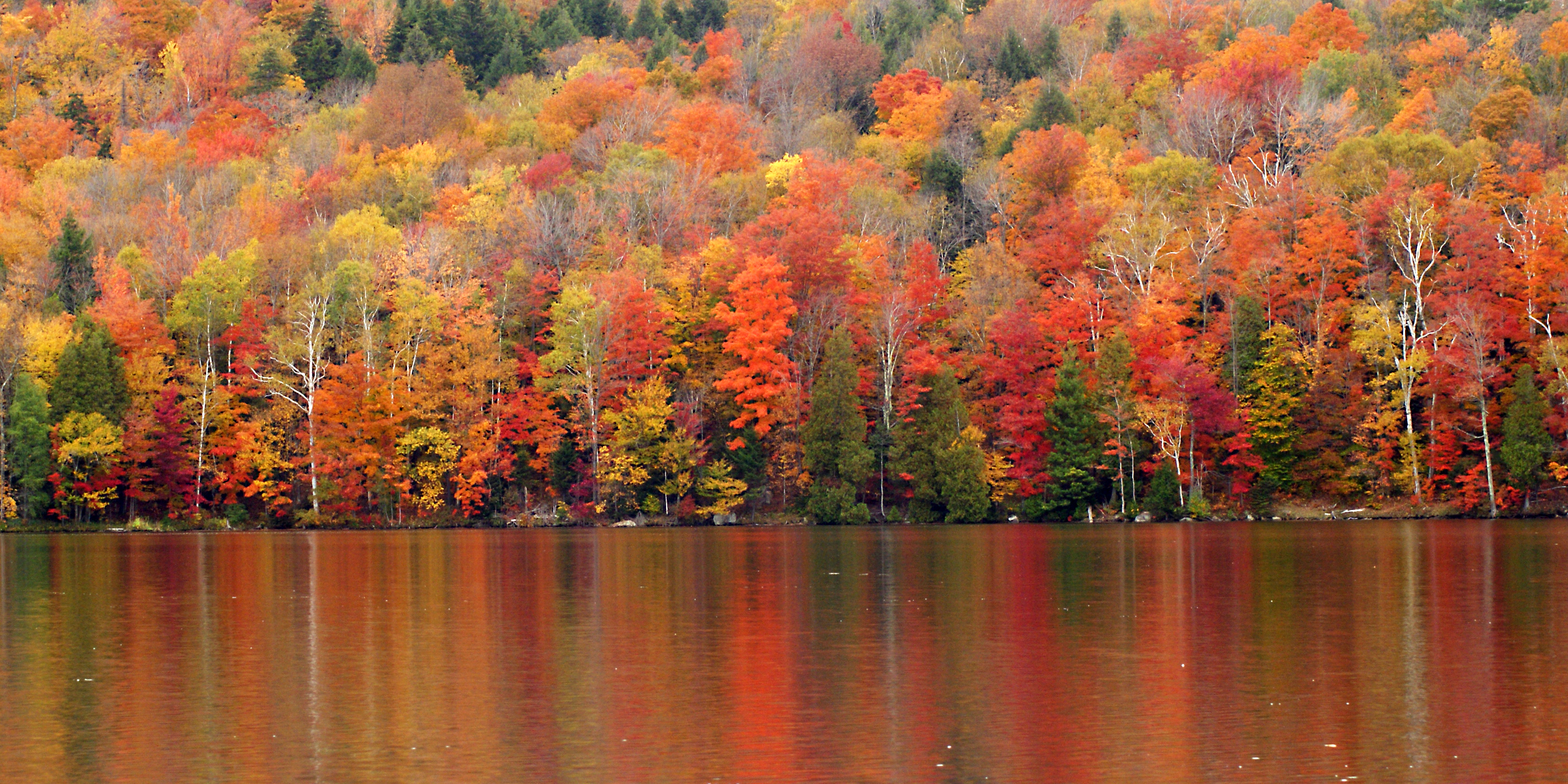 Nature's Palette, Vermont, USA