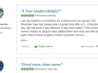 Tripadvisor review #100