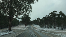 Snowy Corryong and Surrounds