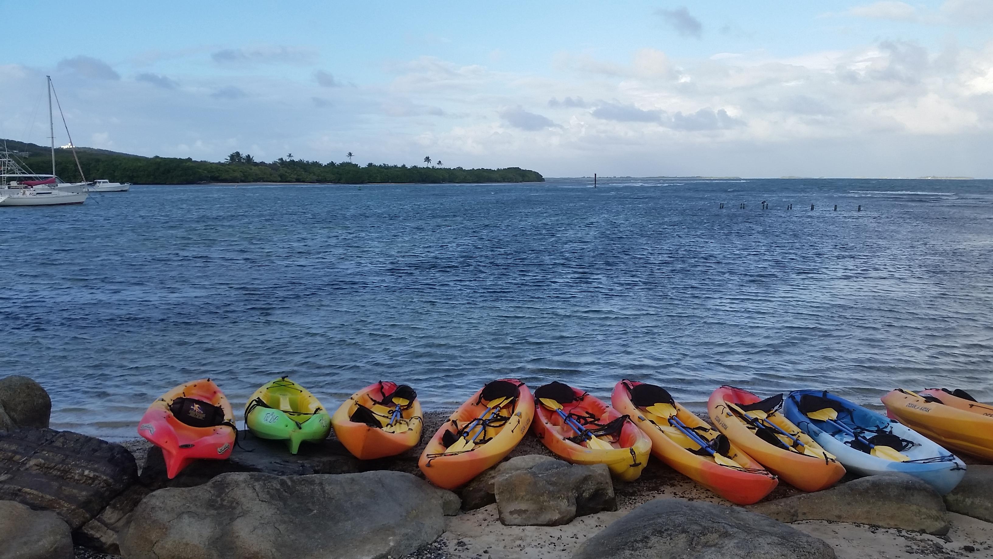 Bio Bay Fajardo