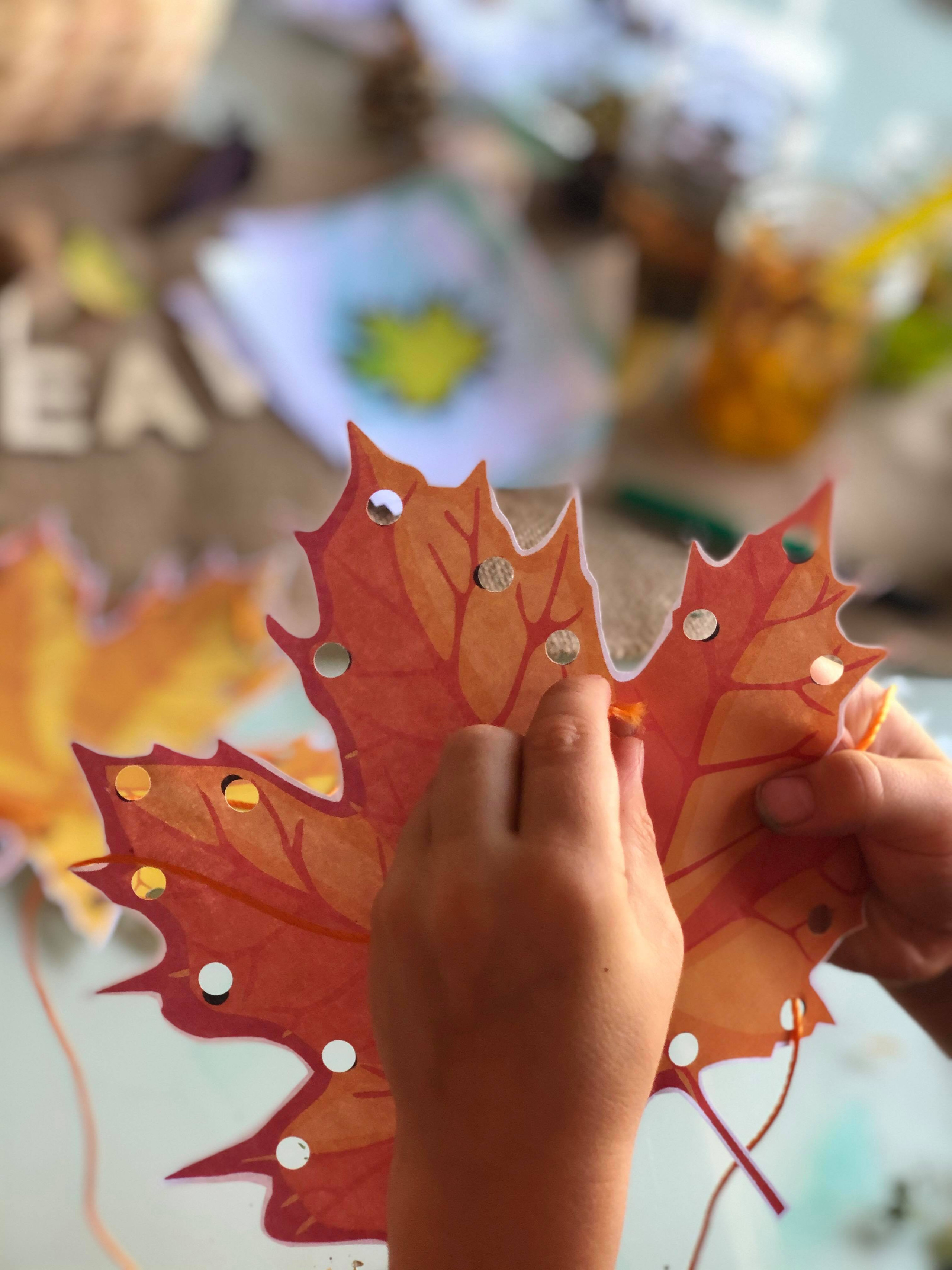 Changing Leaves Activity for Kids