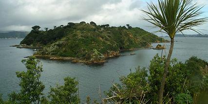 Matiu Somes Island  from Mokopuna Island_DOC.jpeg