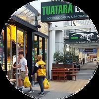 Tuatara Lodge