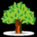 Family Banyan tree.png