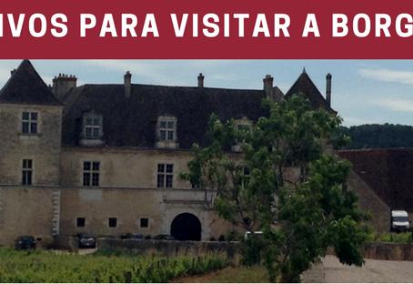 5 motivos para visitar a Borgonha!