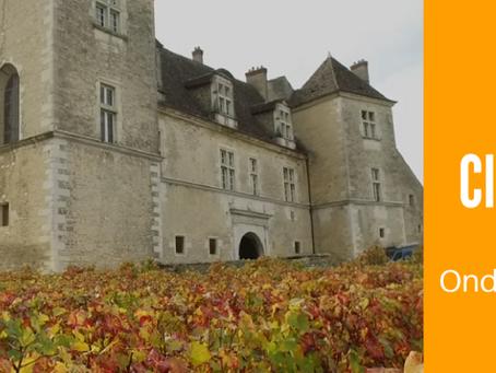 Você sabe onde nasceu o vinho da Borgonha?