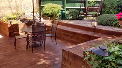 Deck staining & oiling