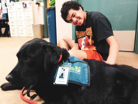 SNAPSHOT: Pierson Lends a Helping Paw