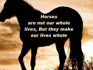 Horses are not our whole lives, but they make our lives whole.