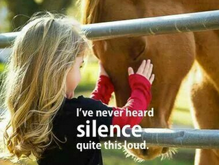 I've never heard silence quite this loud.