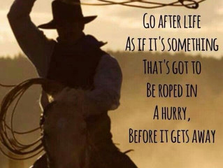 Go after life as if it's something that's got to be roped in a hurry, before it gets away.