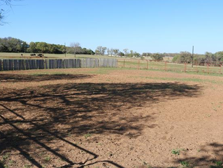 Looking for a functional small horse property close to town?