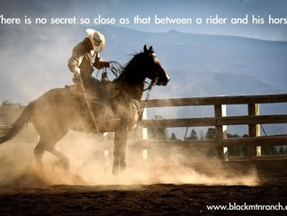 There is no secret so close as that between a rider and his horse.