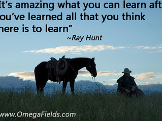 It's amazing what you can learn after you've learned all that you think there is to learn. ~Ray Hunt