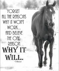 Forget all the reasons why it won't work…and believe the one reason why it will.
