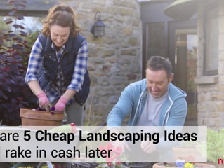 5 Cheap Landscaping Ideas