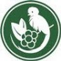Fca Aurora Logo.jpg