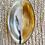 Thumbnail: Tortoise Brass Rim Bowl