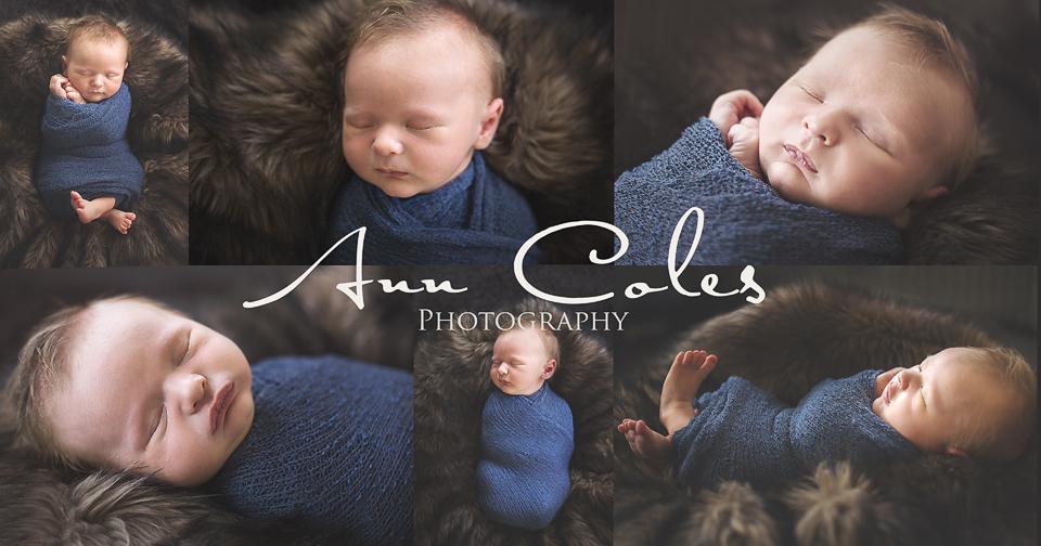 Newborn Mini photo copy