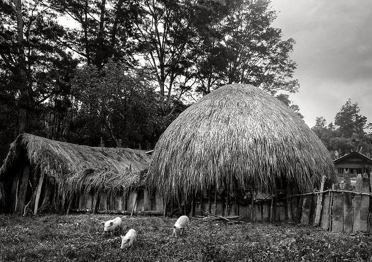 Indo (55).Sacha Dean Biyan | Papua New Guinea