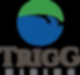 Copy of trigg_logo_box_onwhite.png