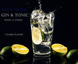 gin and lime for web.jpg