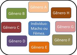 Biologia, cultura e ideologia na questão do gênero e da sexualidade infantil: Mimética versus Genéti