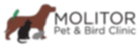 Vet, Veterinary, Veterinarian, Burlington, Wisconsin, Molitor. Pet, Animal, Hospital, Bird, Doctor