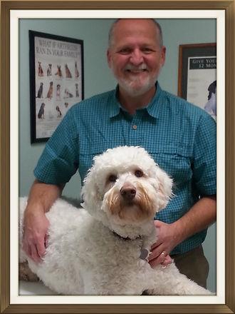 Vet, Veterinary, Veterinarian, Burlington, Wisconsin, Molitor. Pet, Animal, Hospital, Bird, Doctor