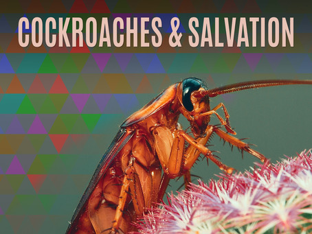Cockroaches and Salvation