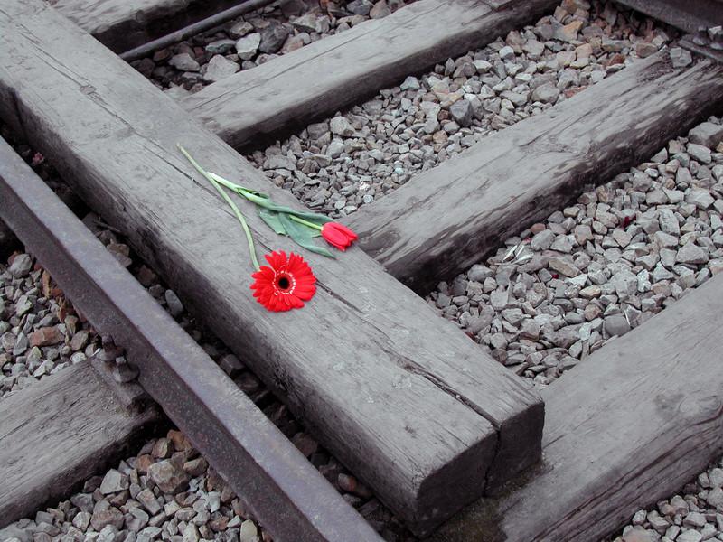 Auschwitz © Andrea Scaccabarozzi | Dreamstime.com