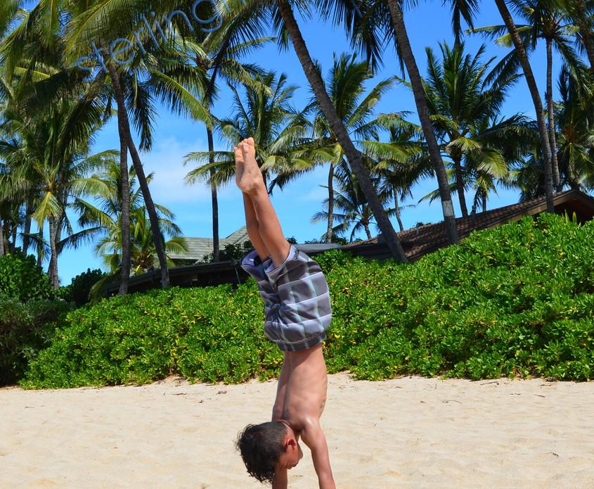 Hawaii2012_sterling.jpg