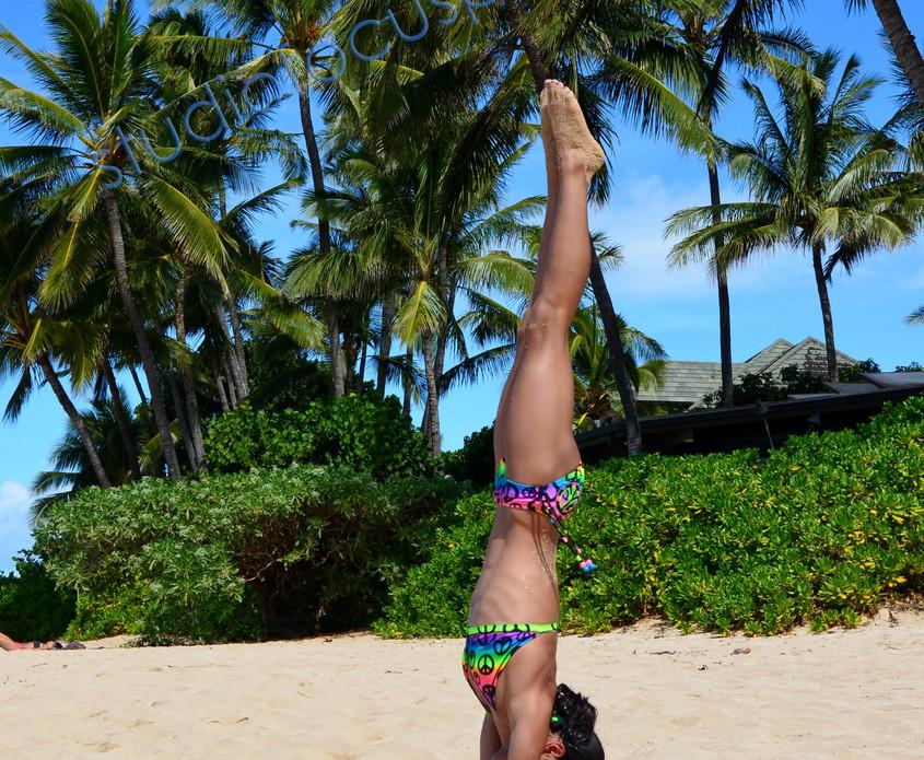 Hawaii2012_maya.jpg