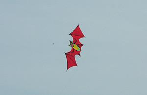 the_red_bat1.jpg