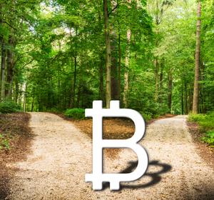 Obter Bitcoin Cash