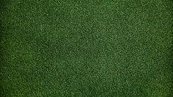 grass-background-1v-2048x1152-2.jpg