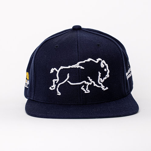 LIMITED TOUR EDITION -NAVY