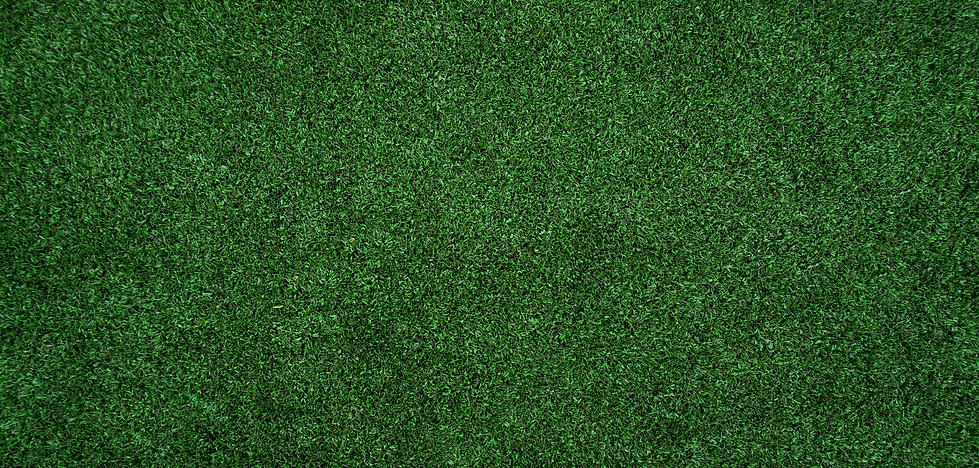 GRASS_1.png