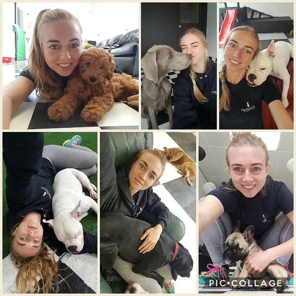 Puppies and Jordan
