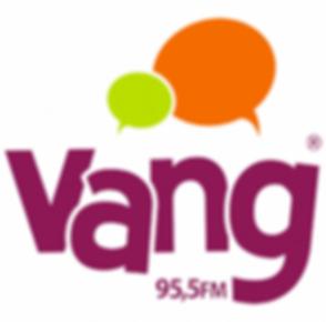 Vang 95,5 FM.png