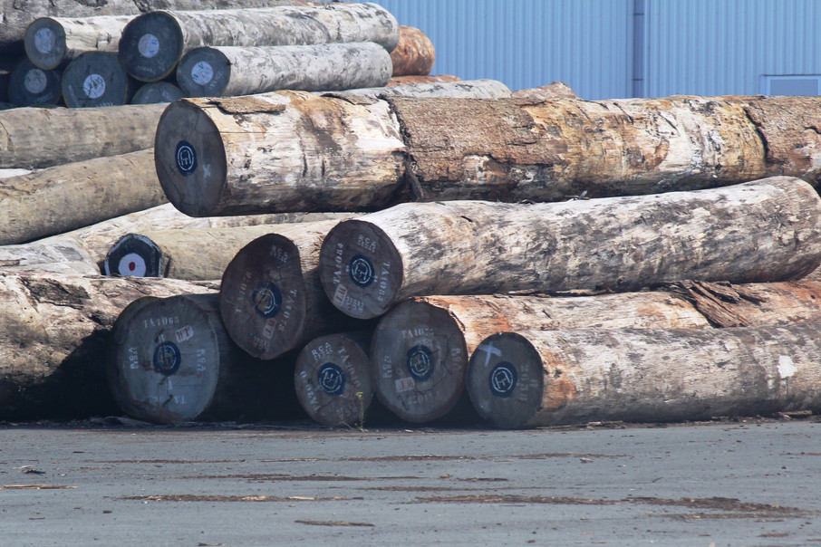 FRENCH FIRMS CONTINUING TO IMPORT HIGH-RISK LOGS FROM AFRICA