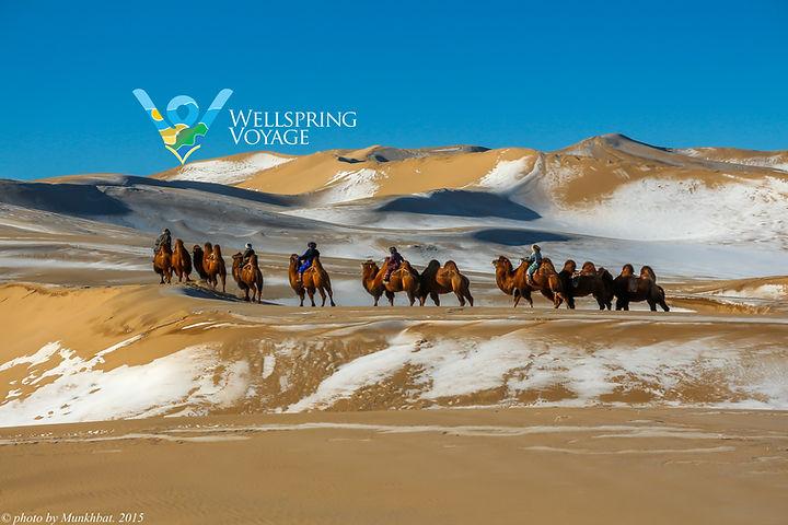 Muughi Khongor Sand Dune.jpg
